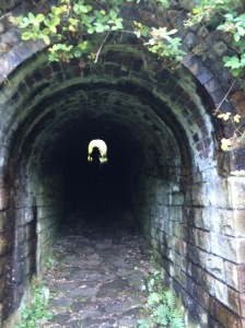 A beautiful tunnel.
